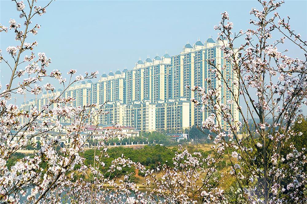 http://yuefangwangimg.oss-cn-hangzhou.aliyuncs.com/uploads/20191031/1b907679e6a2f123a72120a73bd2559fMax.jpg
